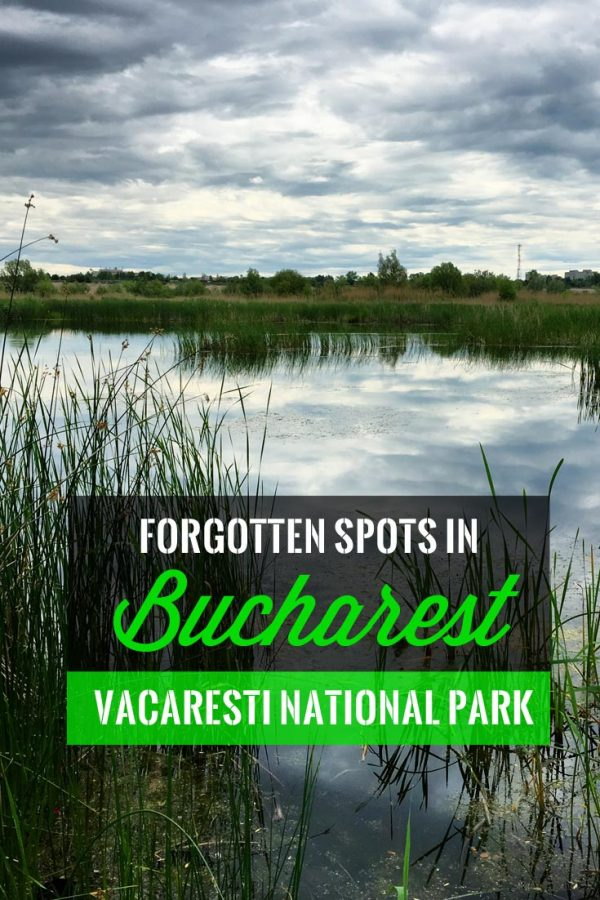 Pin It: Forgotten Places in Bucharest - Vacaresti