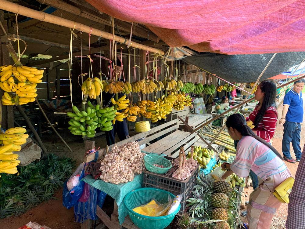 Laos Roadside Fruits