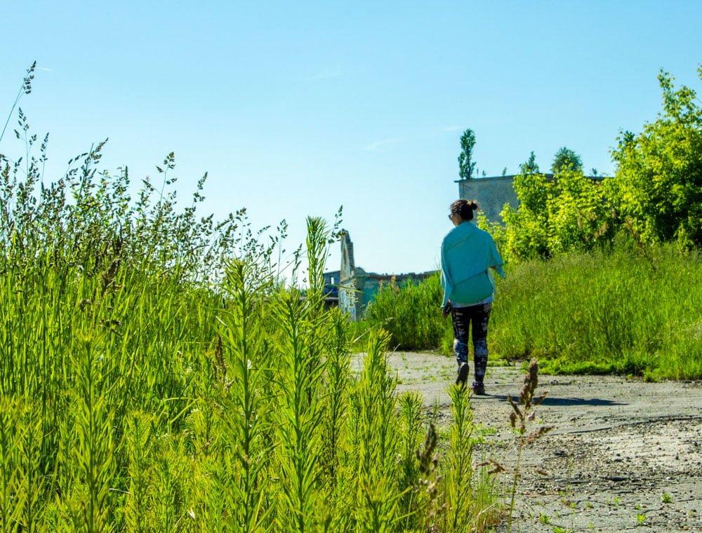 Bucharest Chimopar Me Walking Grass